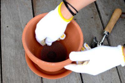 鉢底にネットを敷く