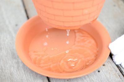 鉢底から水が出てきたら終了