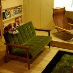 カリモク60のソファ「Kチェア2シーター モケットグリーン」のある部屋を集めてみました