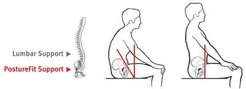 猫背の時の骨盤の傾き
